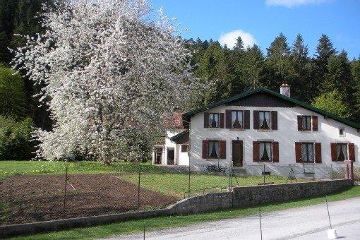 Appartement  4 personnes dans maison de caractère, jardin,calme, à Gerardmer, vacation rental in Gerardmer