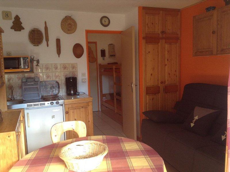 Pretty studio with balco excellent, 3rd floor, Ea, vacation rental in Samoens