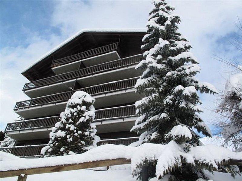 appartement ensoleillé - pied des pistes - Verbier, Medran, holiday rental in Bagnes