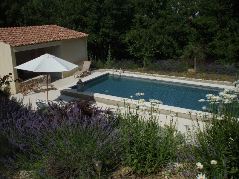 Villa traditionnelle avec piscine et jardin Provençal aux coeur du luberon, holiday rental in Rustrel