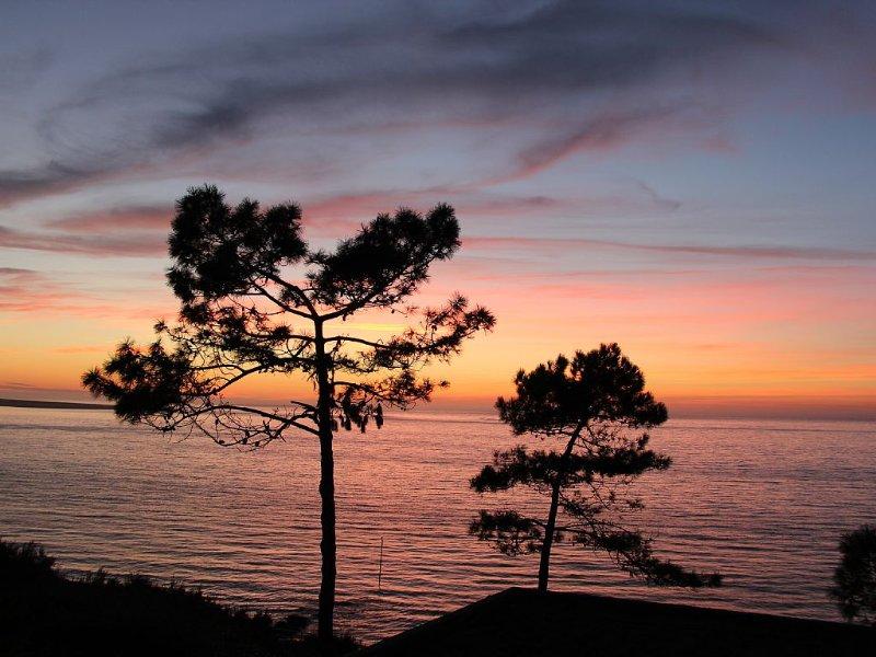 Villa en bord de mer et au calme à quelques pas de la Dune du Pula, location de vacances à La Teste-de-Buch