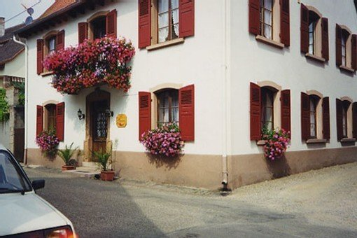 Gite au plein coeur des traditions de l'Alsace., holiday rental in Breitenbach