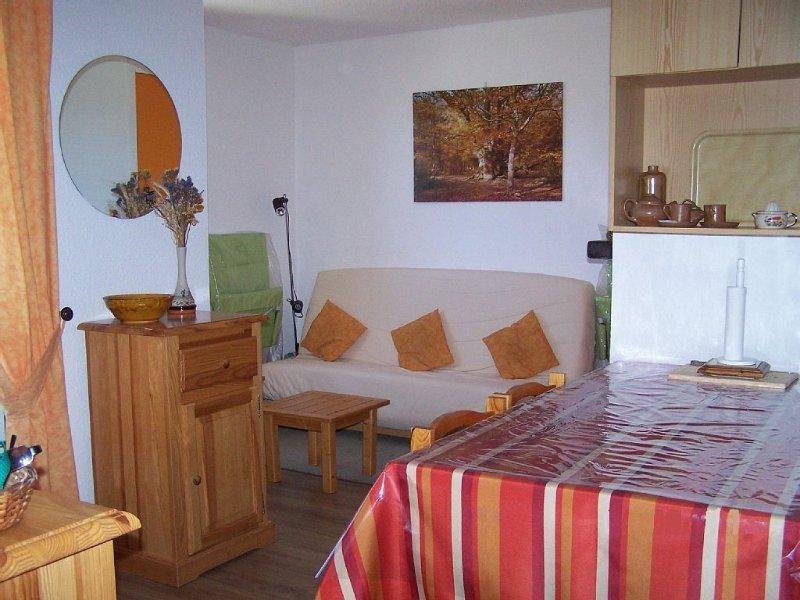 Appartement agréable, ensoleillé dans secteur calme aux Angles, location de vacances à Matemale