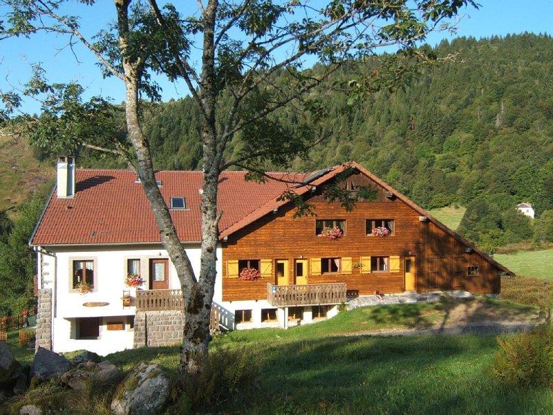 Appartement style chalet, environnement calme et sports de montagne à proximité, vacation rental in La Bresse