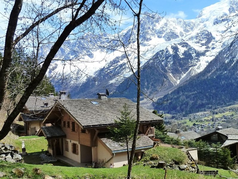 south facing apartment on the ground floor in small cottage front chain MT WHITE, holiday rental in Chamonix