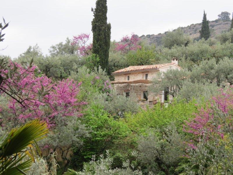 Cabanon dans les oliviers à Nyons., aluguéis de temporada em Sahune