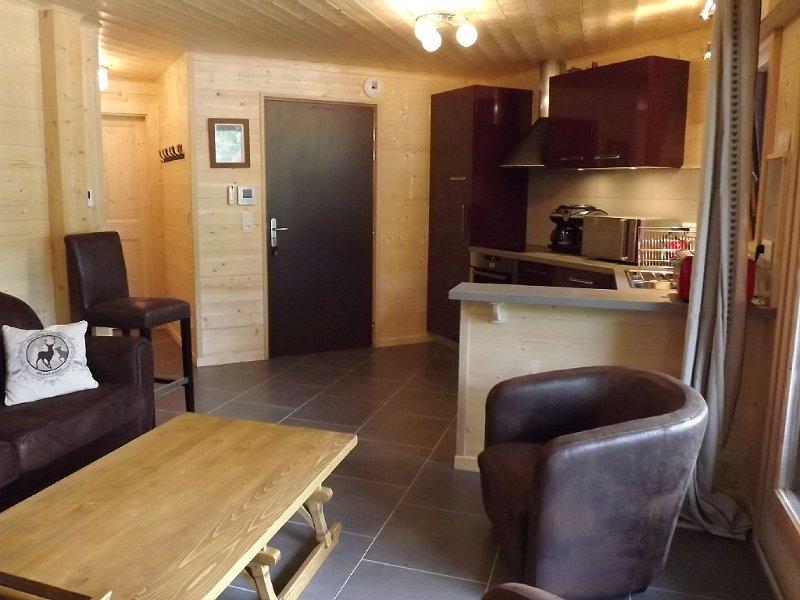 CENTRE MORZINE, NAVETTE GRATUITE, INTERNET, 4 ETOILES, holiday rental in La Cote-d'Arbroz