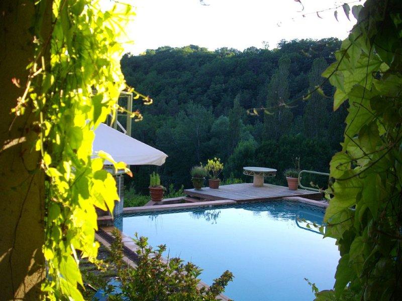 C'est une maison ... adossée à la colline, holiday rental in Rouffignac-Saint-Cernin-de-Reilhac