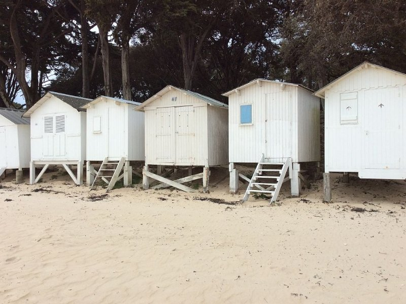 Les cabines de plage, plage des Dames