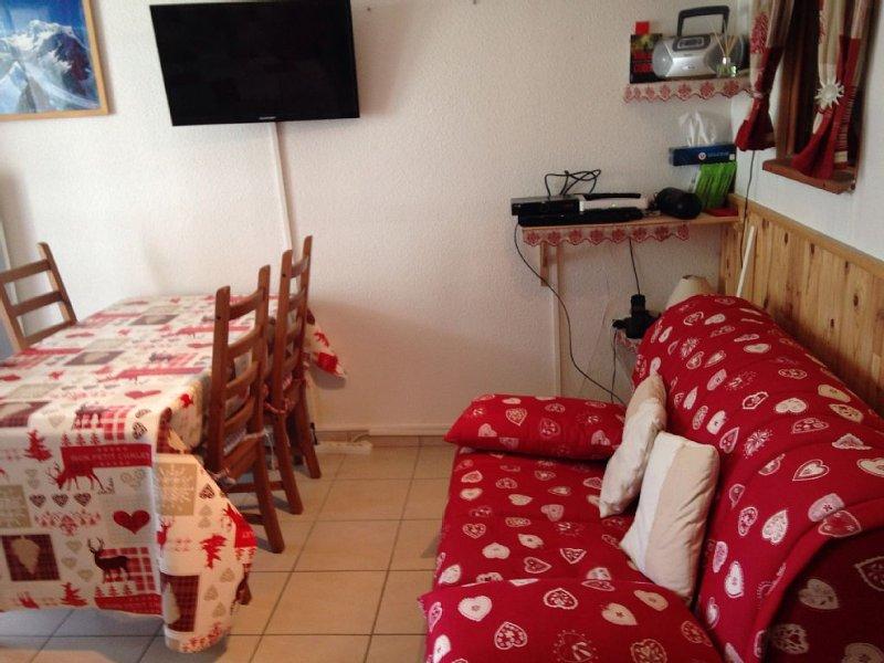 Apartment 6 - 8 p. in bourg-saint maurice  les arcs -- nearly a funicular, location de vacances à Bourg Saint Maurice