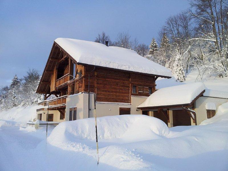 Bel appartement récent sur les hauteurs de Foncine le haut, au bayard, holiday rental in Chaux-Neuve