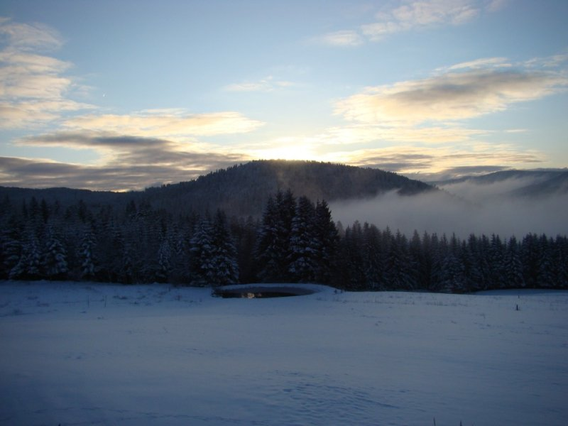 Apartments with terrace in farm has not exploited Gerardmer, vacation rental in Gerbepal