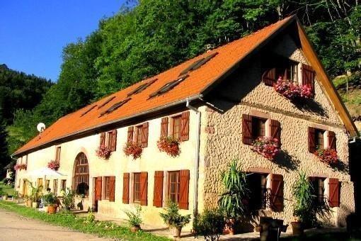 Grande maison en pleine nature, havre de paix idéal grands groupes ou familles, Ferienwohnung in Haut-Rhin