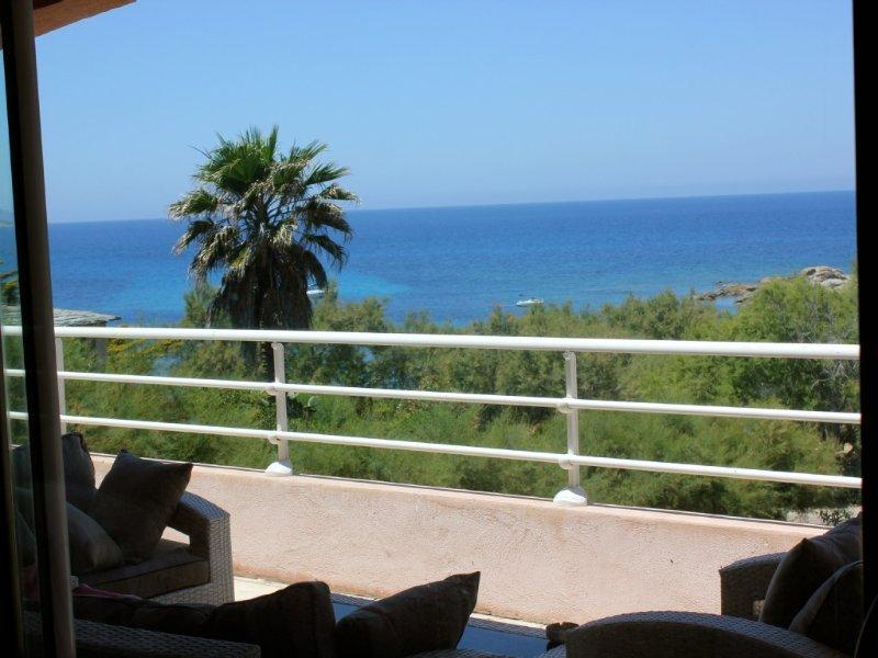 La mer vue de la terrasse (orientation SO)