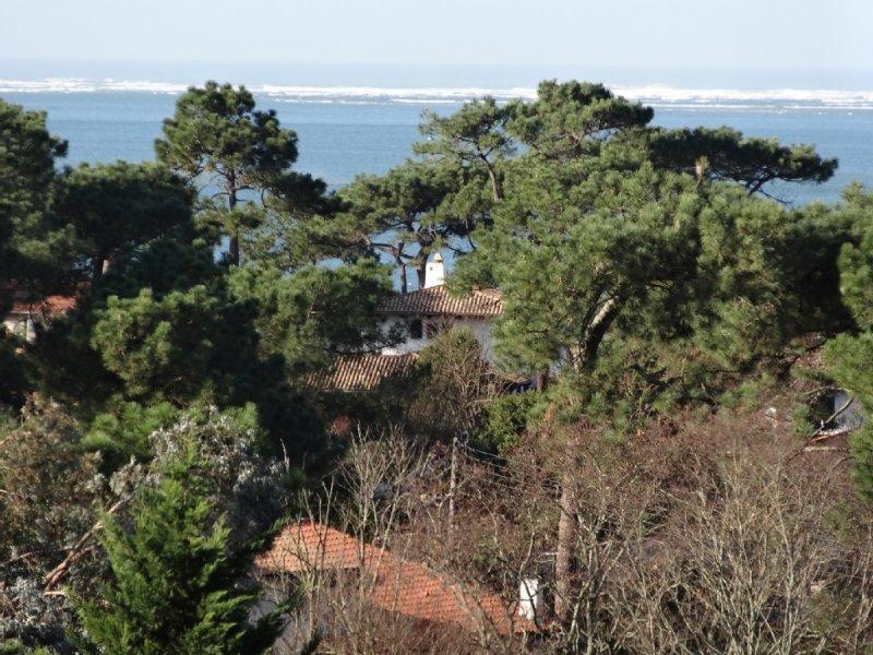 Pyla sur Mer Villa luxe 300 m plage. Vue mer Piscine chauffée Vélos Bateau Boule, vacation rental in Pyla-sur-Mer