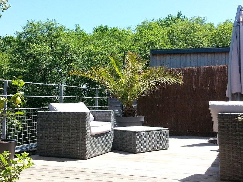 CHARMANT T3 en duplex de 70m² avec terrasse, calme et très lumineux, vacation rental in Bayonne
