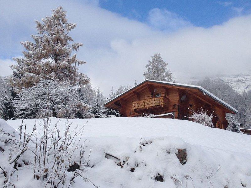 Chalet chaleureux en bois, Chamonix, vue imprenable Mt Blanc proche station ski, casa vacanza a Chamonix