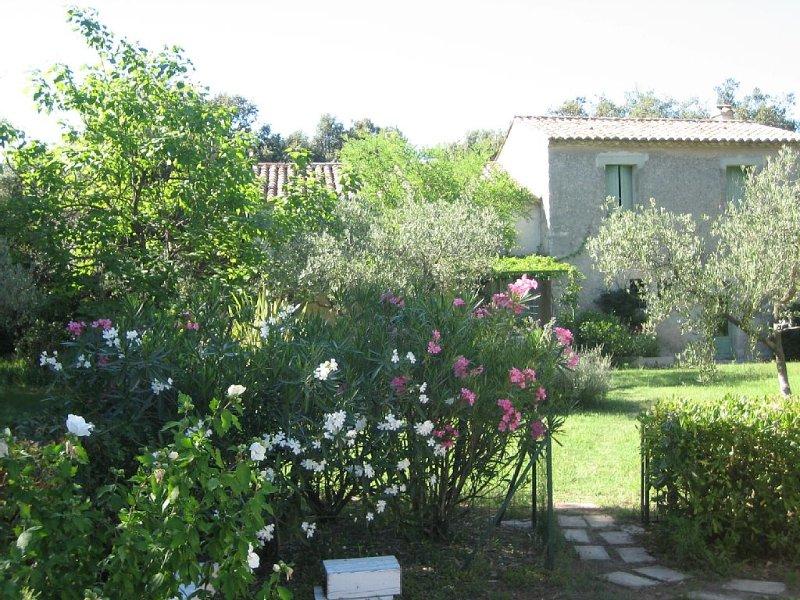 Mas ancien 6/7p, tout confort ,grand jardin, piscine, cité médiévale de Sommiere, holiday rental in Boisseron