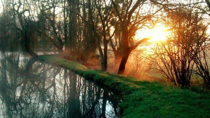 un lever de soleil, un matin d'hiver