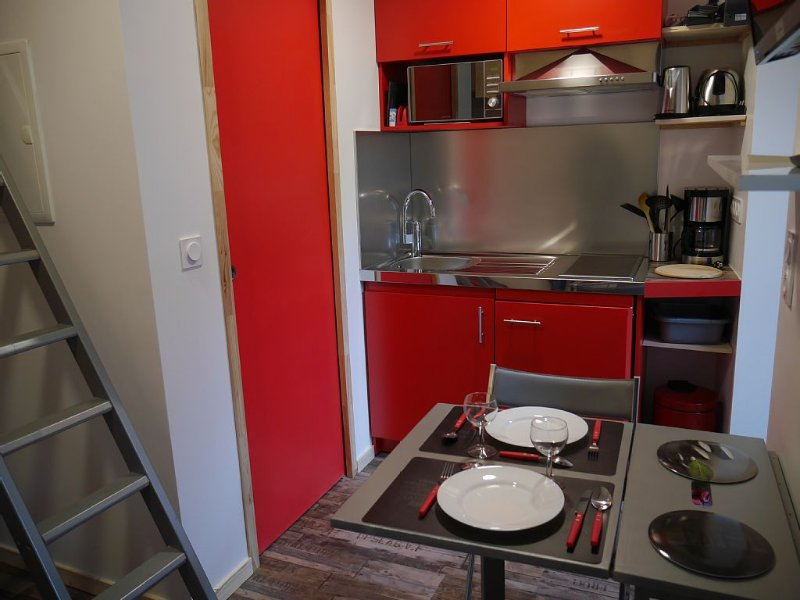 Small renovated studio in 2016, vacation rental in Cauterets