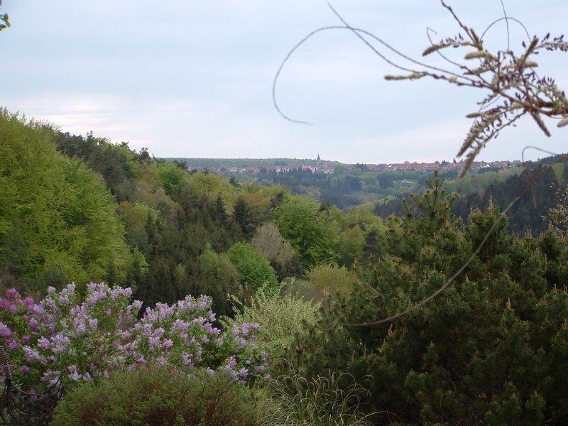 Trés agréable gîte au coeur des Vosges du Nord, bien équipé, maxi 12 pers, casa vacanza a Lichtenberg