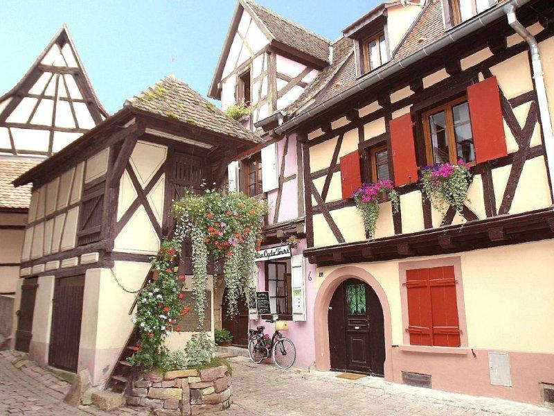 Coquette maison à colombages du 17ème siècle entièrement rénovée, holiday rental in Rouffach