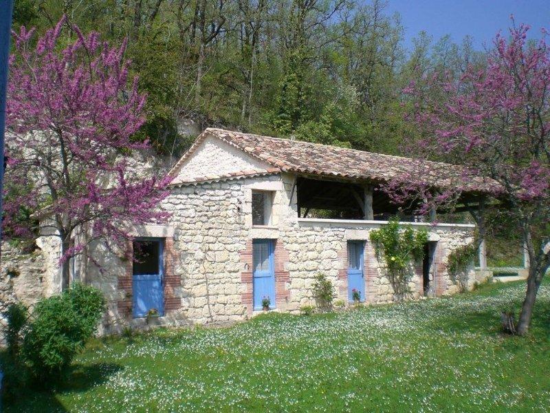 Gite pour 2, wifi 24/7, piscine, très calme, tennis à pied & golf 5 km, location de vacances à Castelnau-Montratier