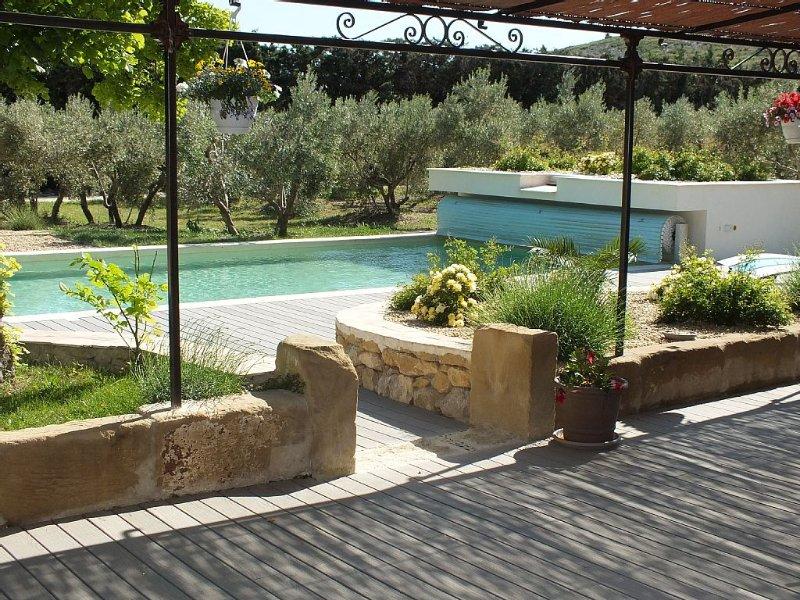 mas 3OOm2 climatisé, piscine chauffée, terrain multi sports, location de vacances à Eyguières