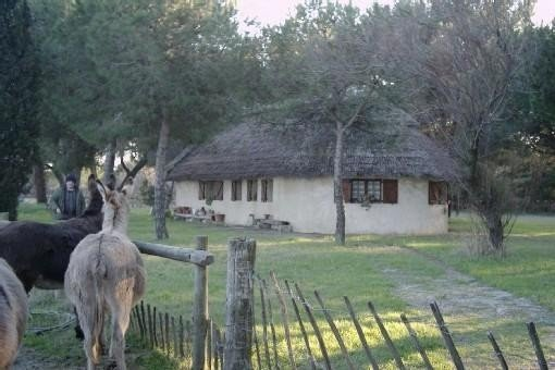 Location maison type cabane de Gardian Aigues Mortes, aluguéis de temporada em Sylvereal