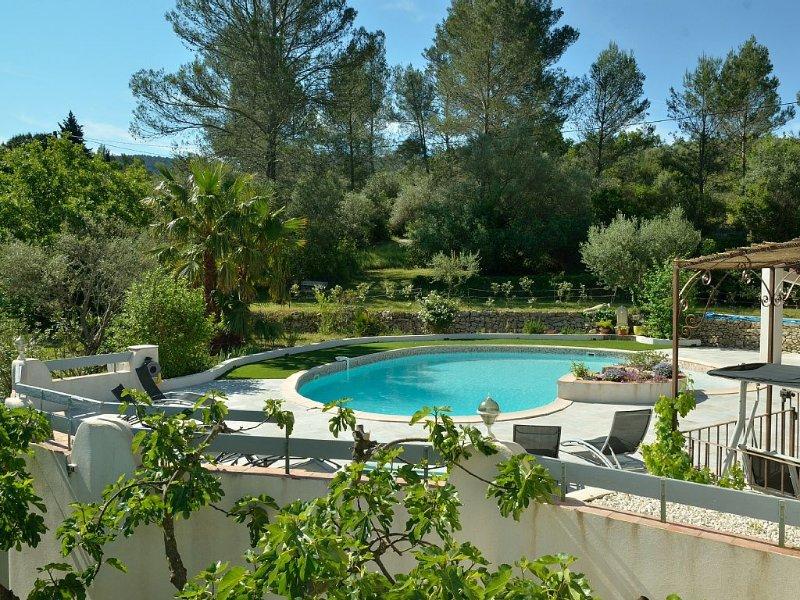 En Provence au milieu des pins, des oliviers et du chant des cigales belle villa, holiday rental in Sollies-Pont
