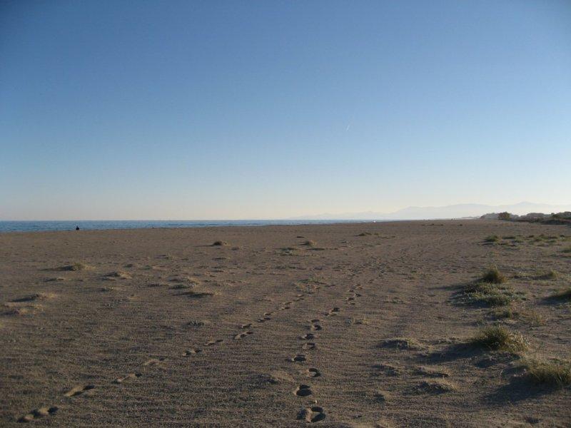 grande plage de leucate