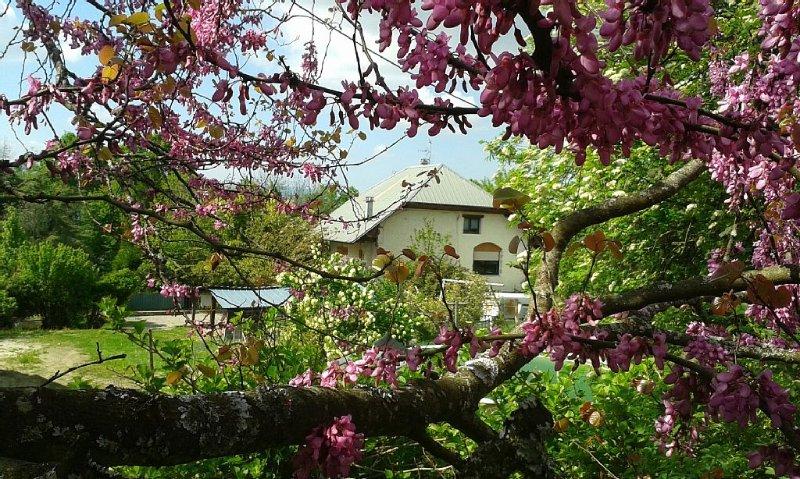 Gîte  L'Ambrune 3 étoiles  de 65 m2, dans une ancienne ferme rénovée avec, casa vacanza a Montcel