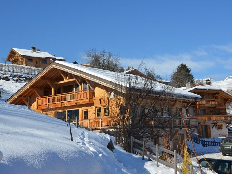 Chalet standing 18/20 pers  vue Mont Blanc, holiday rental in Domancy