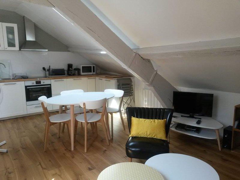 Un vrai nid en Hyper-centre, vacation rental in Nantes