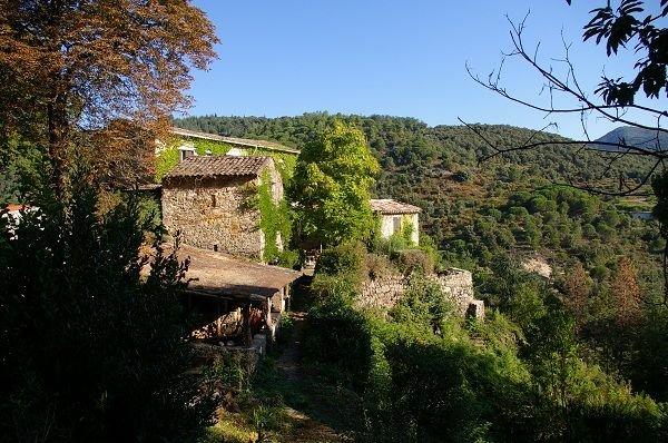 Gîte de charme dans mas Cévenol - Pleine nature à proximité de Lasalle, location de vacances à Monoblet