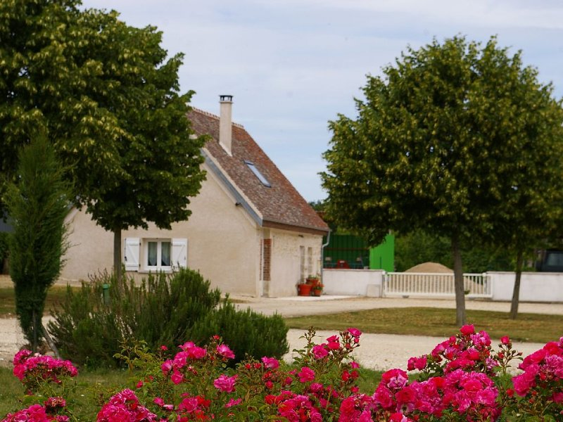 HUNTING-FISHING-NATURE-TOURISM (with pool, casa vacanza a Chatillon-Coligny