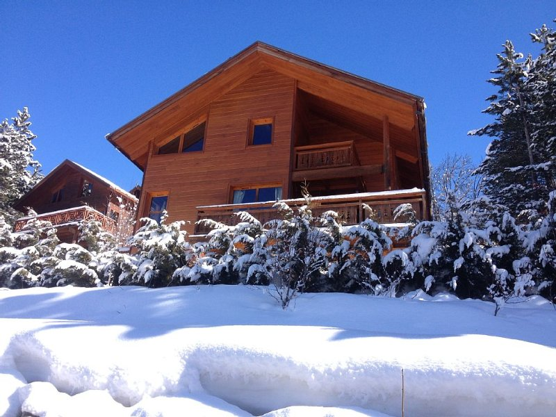 Chalet Les Blanchons, holiday rental in La Salle les Alpes