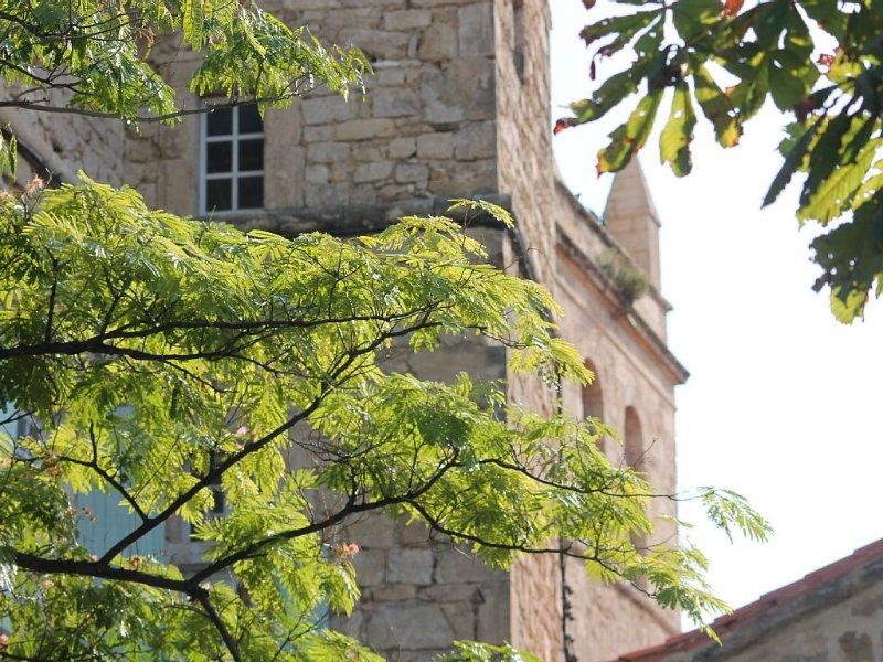 Maison Vigneronne de charme labellisée 3 cl vue imprenable dans village médiéval, holiday rental in Pailhes