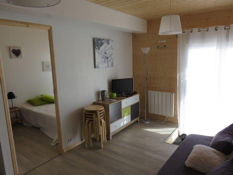 appartement dans residence pleine nature,terrasse, pied pistes ski ,sentiers, location de vacances à Les Rousses