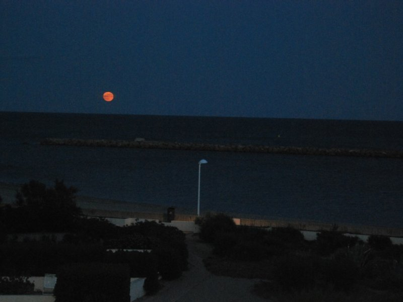 red moon on the sea
