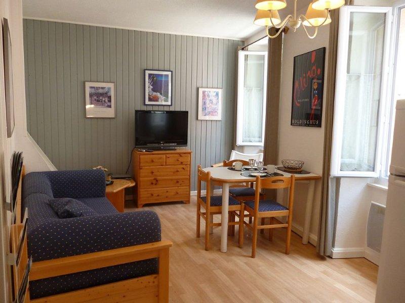 Appartement  Centre ville tous commerces, wifi, animaux admis, parking gratuit, vacation rental in Thonon-les-Bains