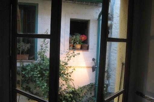 Plein centre historique du vieux Collioure,  zone piétonne et lumineuse, vacation rental in Collioure
