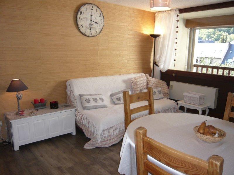 Bel appartement ***de charme et lumineux à proximité de tout, vacation rental in Saint-Lary-Soulan
