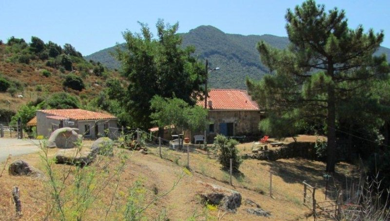 Mini-Villas in Sartenaise Campaign: The calm and, vacation rental in Sartene