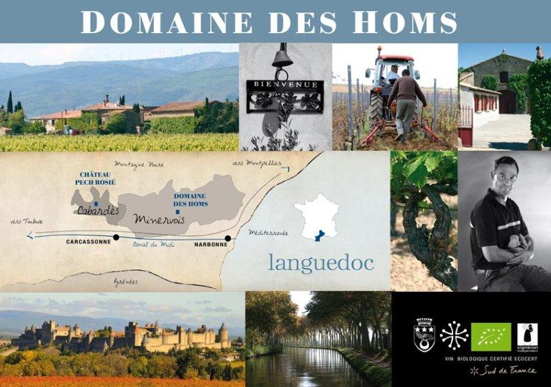 Au coeur d'un domaine viticole, dans un cadre authentique., holiday rental in Rieux Minervois
