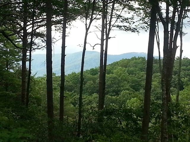 Beautiful Mountain View w/ hot tub for $99/night, vacation rental in Gilmer County