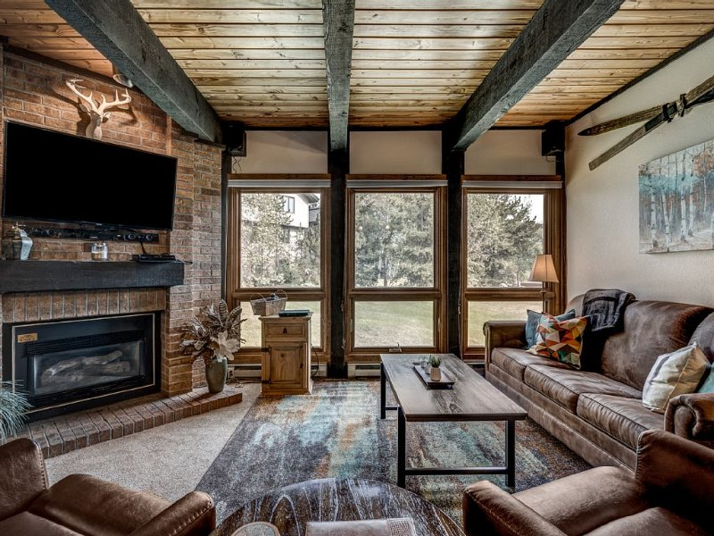 Stay With Style - 2BD/2BA - Walk to Gondola - W&D - Free WiFi, location de vacances à Steamboat Springs
