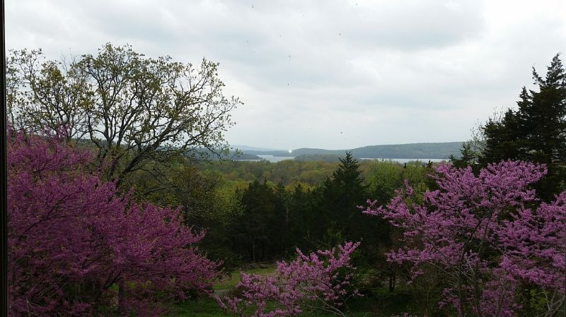 Panoramic views of Lake Tenkiller from the House on the Hill, holiday rental in Park Hill
