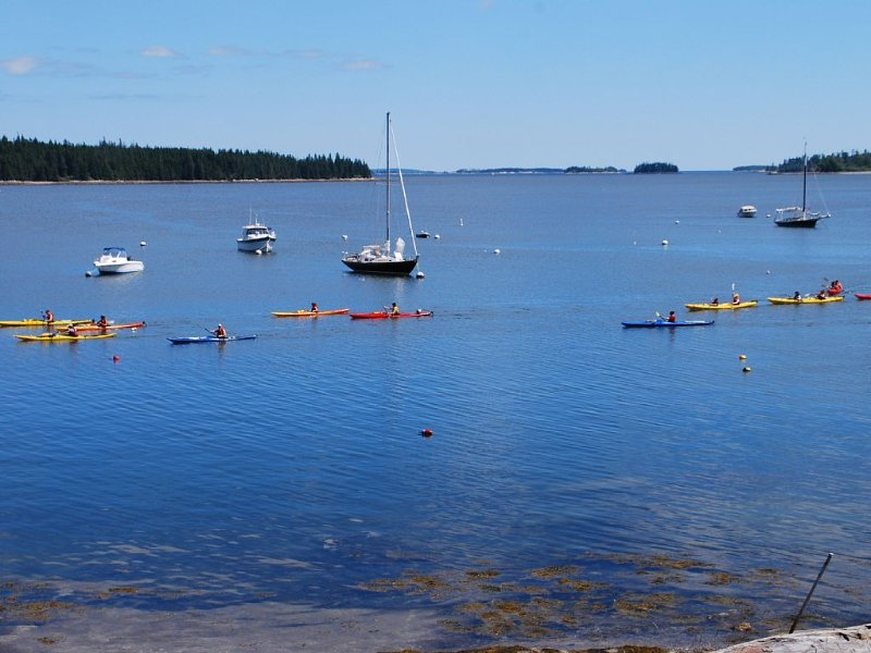 Kayakers, picture taken from the dock.