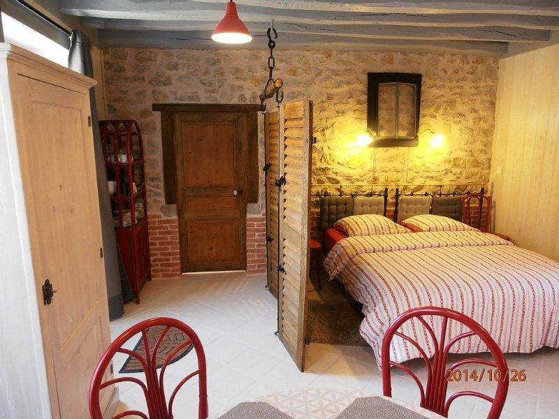 Gîtes, Maisonnette, chambre d'hôtes, accueil vélos,DECIZE, holiday rental in Verneuil